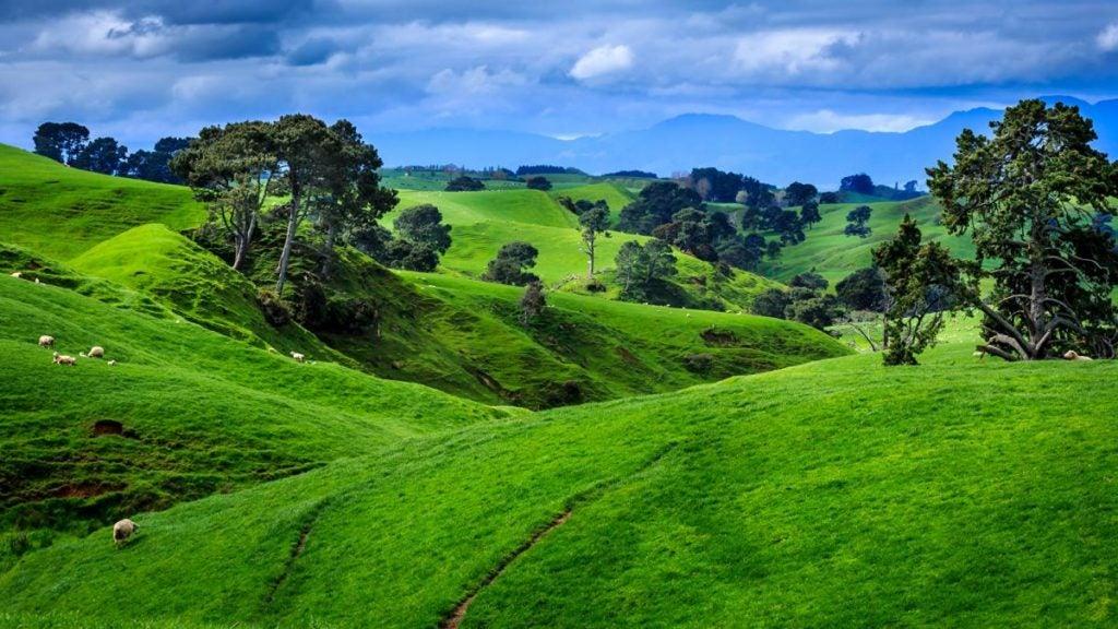 greenery NZ