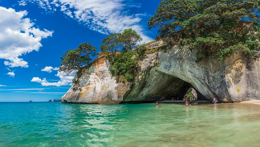tropical beach in NZ